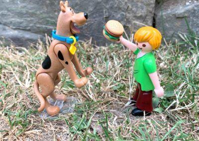 Scooby Futter