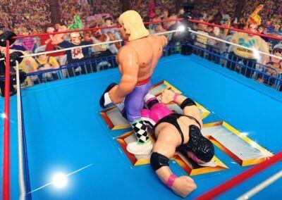 Sieg für Owen Hart